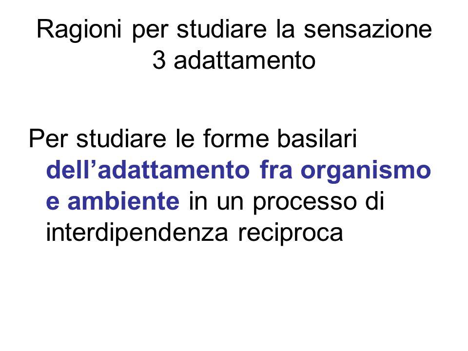 Ragioni per studiare la sensazione 3 adattamento Per studiare le forme basilari delladattamento fra organismo e ambiente in un processo di interdipend