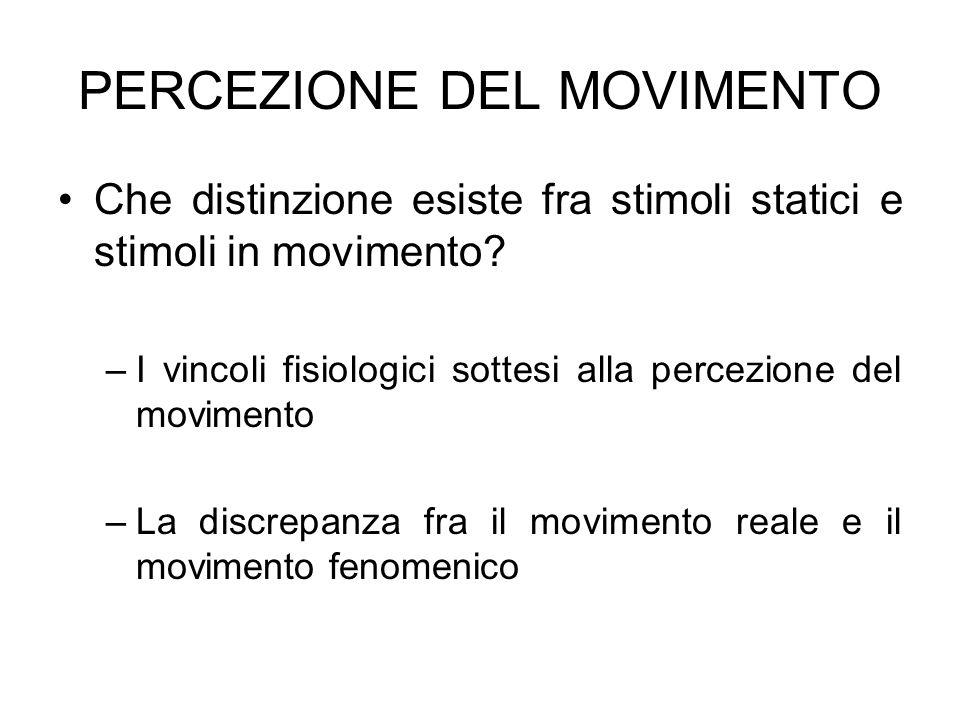 PERCEZIONE DEL MOVIMENTO Che distinzione esiste fra stimoli statici e stimoli in movimento? –I vincoli fisiologici sottesi alla percezione del movimen