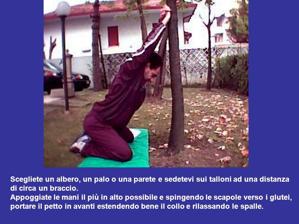 Scegliete un albero, un palo o una parete e sedetevi sui talloni ad una distanza di circa un braccio. Appoggiate le mani il più in alto possibile e sp