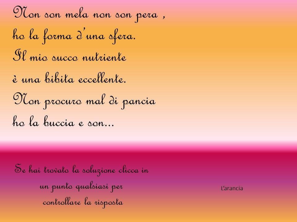 Viva la natura da Chiara Baldi Rita Pagano IIIA