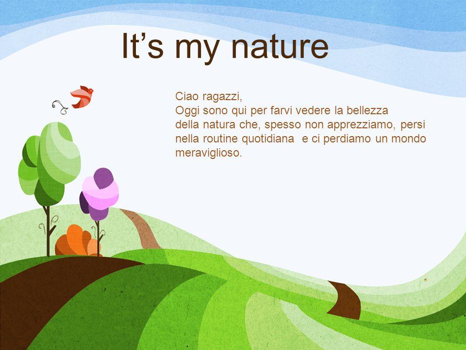 Its my nature Ciao ragazzi, Oggi sono qui per farvi vedere la bellezza della natura che, spesso non apprezziamo, persi nella routine quotidiana e ci p