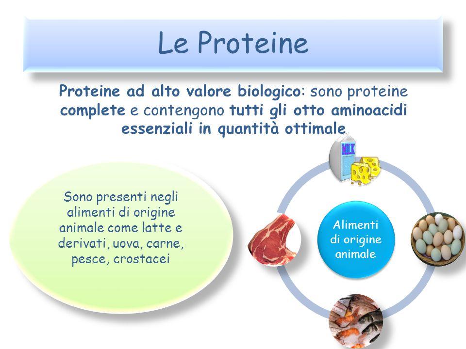 Le Proteine Proteine ad alto valore biologico: sono proteine complete e contengono tutti gli otto aminoacidi essenziali in quantità ottimale Alimenti