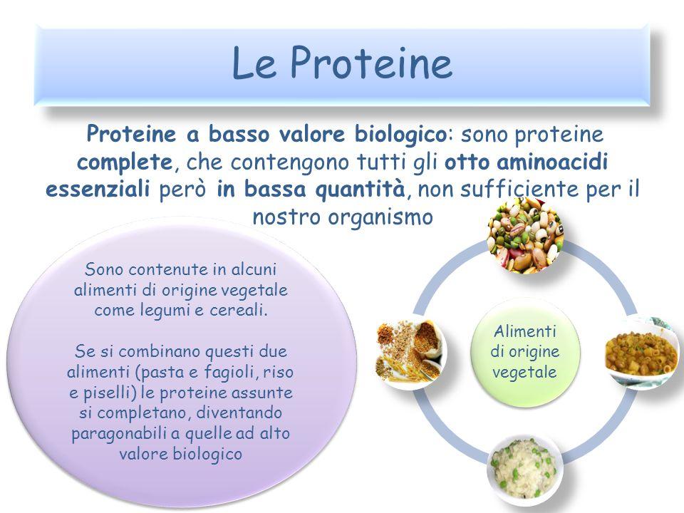 Le Proteine Proteine a basso valore biologico: sono proteine complete, che contengono tutti gli otto aminoacidi essenziali però in bassa quantità, non