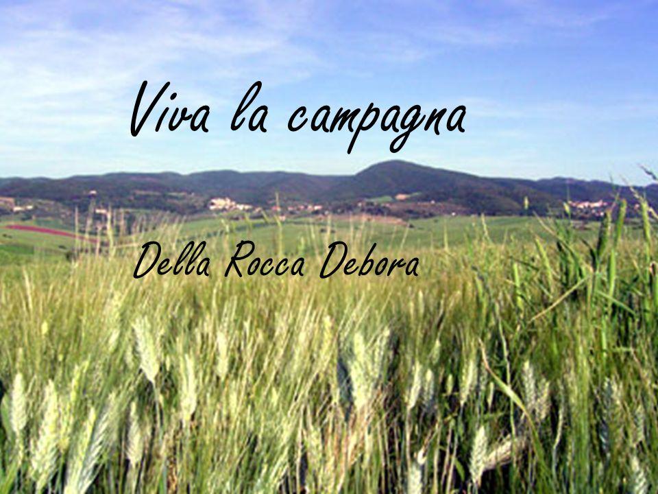 Viva la campagna Della Rocca Debora
