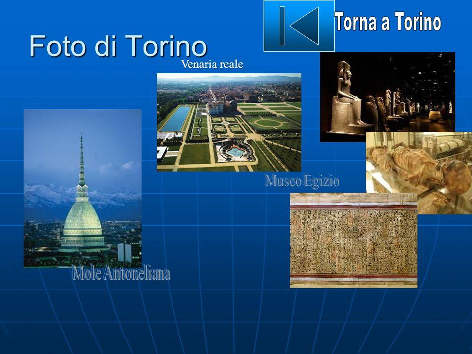 Foto di Torino Venaria reale