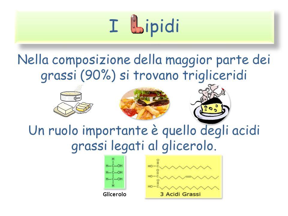 I ipidi Nella composizione della maggior parte dei grassi (90%) si trovano trigliceridi Un ruolo importante è quello degli acidi grassi legati al glic