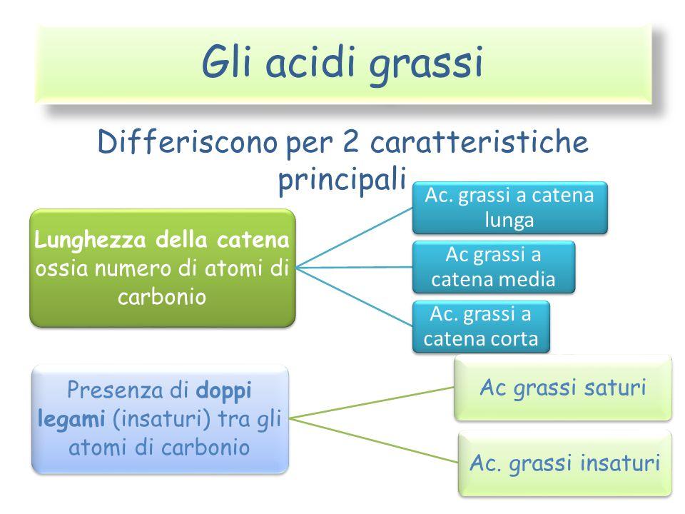Gli acidi grassi Differiscono per 2 caratteristiche principali Lunghezza della catena ossia numero di atomi di carbonio Ac. grassi a catena lunga Ac g