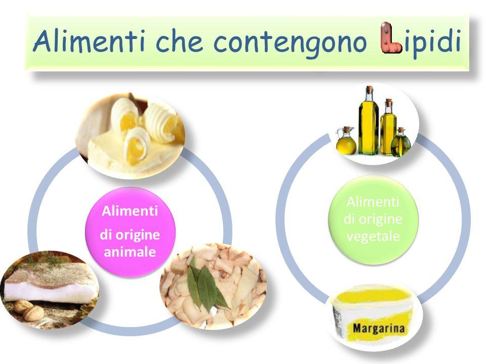 Alimenti che contengono ipidi Alimenti di origine animale Alimenti di origine vegetale