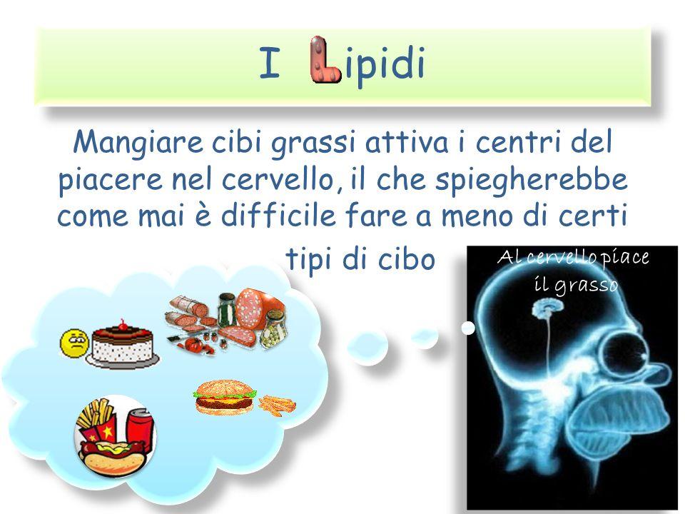 I ipidi Mangiare cibi grassi attiva i centri del piacere nel cervello, il che spiegherebbe come mai è difficile fare a meno di certi tipi di cibo Al c