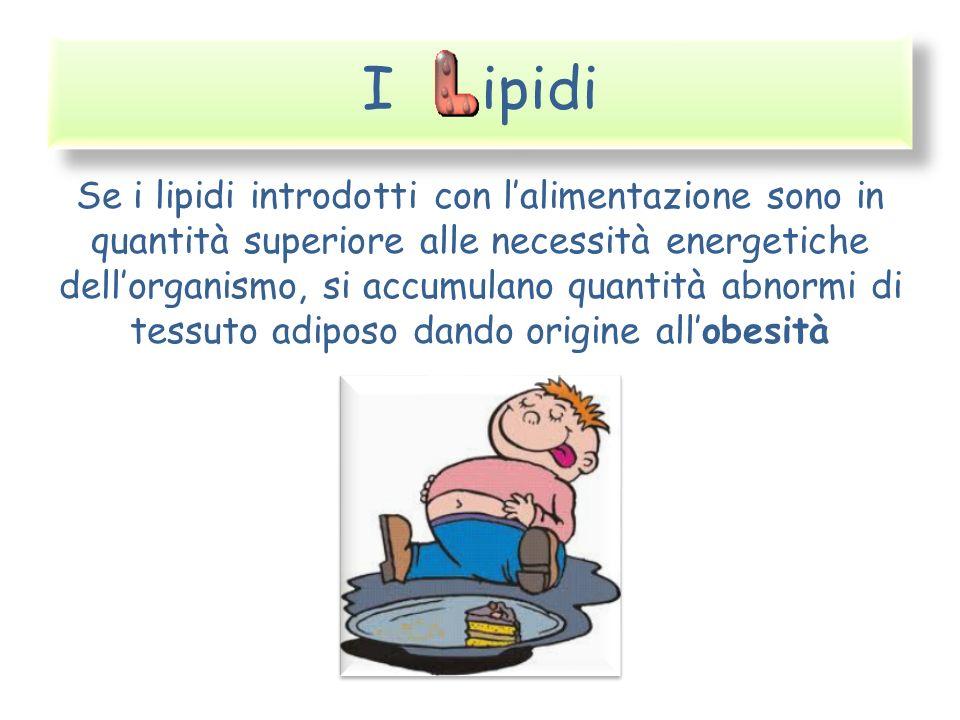 I ipidi Se i lipidi introdotti con lalimentazione sono in quantità superiore alle necessità energetiche dellorganismo, si accumulano quantità abnormi