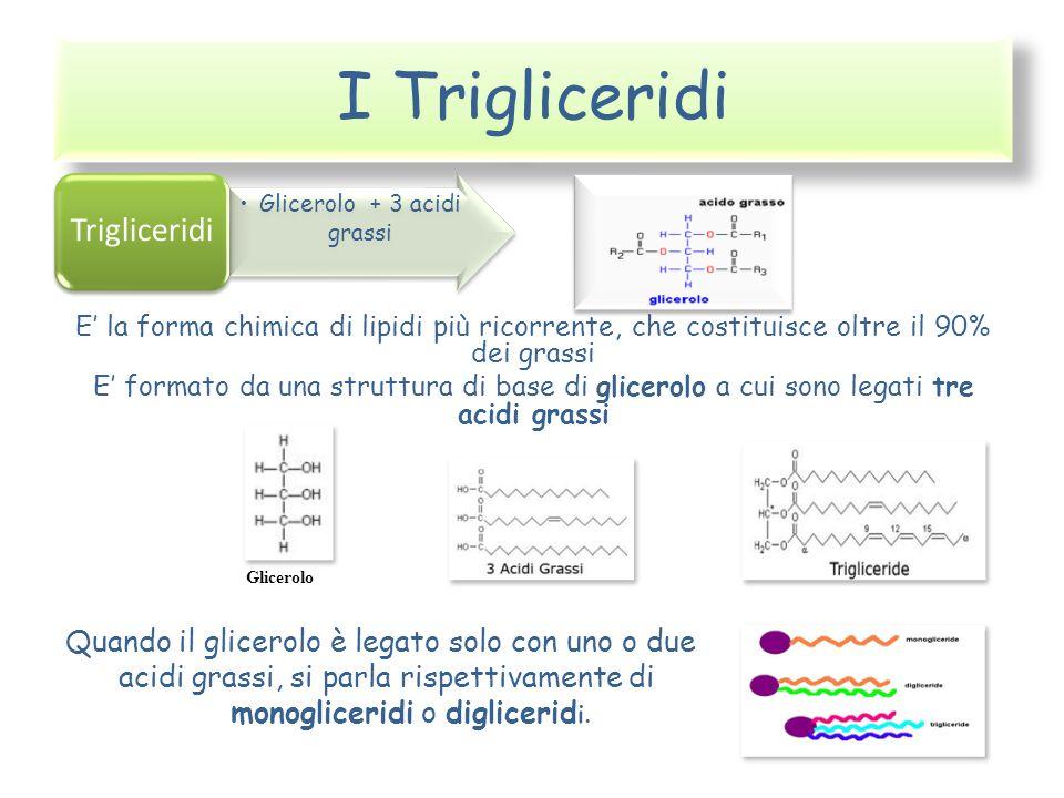 I Trigliceridi E la forma chimica di lipidi più ricorrente, che costituisce oltre il 90% dei grassi E formato da una struttura di base di glicerolo a