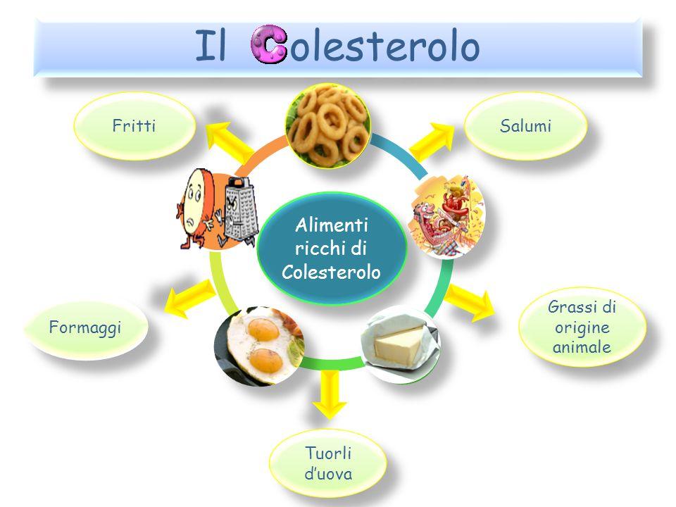 Il viaggio del colesterolo La maggior parte del colesterolo presente nell organismo viene prodotto dal fegato, mentre il resto è introdotto con gli alimenti Entrambi si ritrovano nell intestino