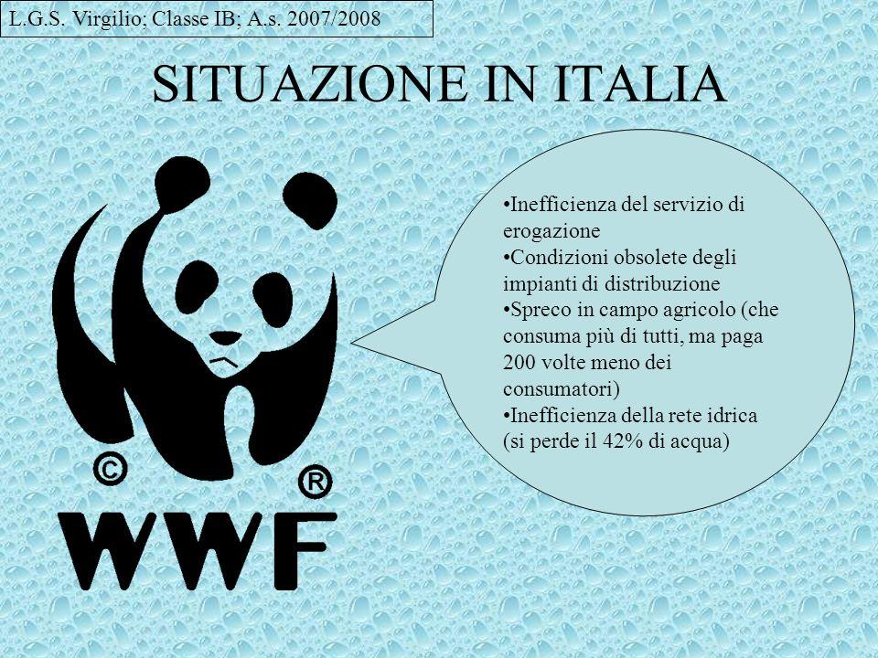 SITUAZIONE IN ITALIA Inefficienza del servizio di erogazione Condizioni obsolete degli impianti di distribuzione Spreco in campo agricolo (che consuma