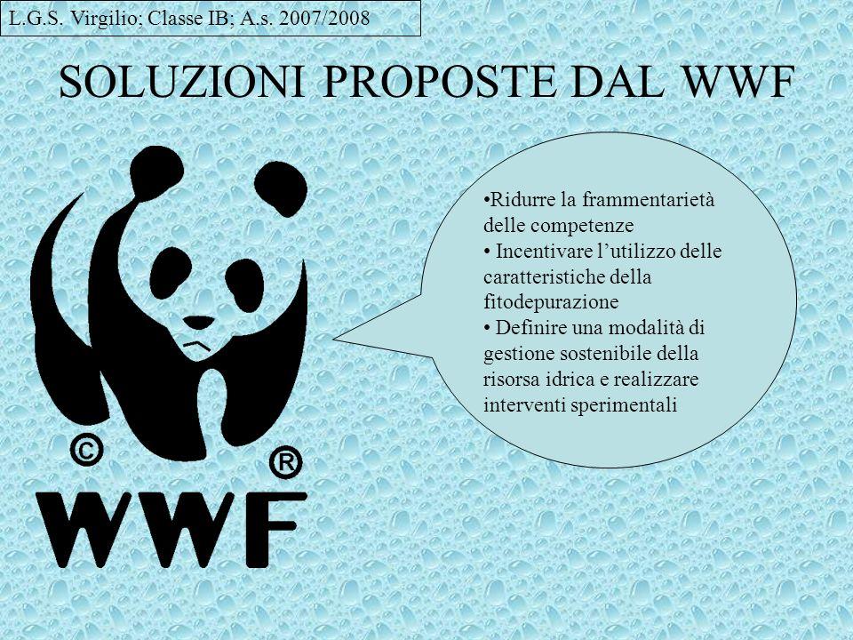 SOLUZIONI PROPOSTE DAL WWF Ridurre la frammentarietà delle competenze Incentivare lutilizzo delle caratteristiche della fitodepurazione Definire una m
