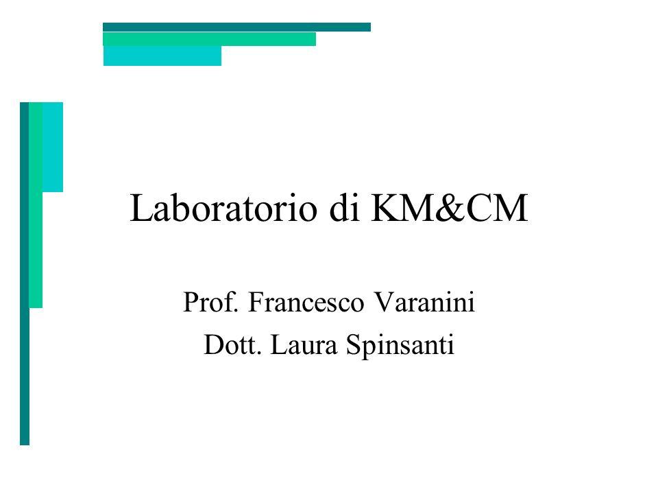 Laboratorio di KM&CM Prof. Francesco Varanini Dott. Laura Spinsanti