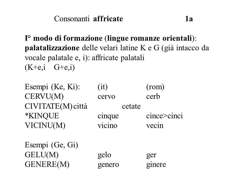 Consonanti affricate 1a I° modo di formazione (lingue romanze orientali): palatalizzazione delle velari latine K e G (già intacco da vocale palatale e, i): affricate palatali (K+e,i G+e,i) Esempi (Ke, Ki):(it)(rom) CERVU(M)cervo cerb CIVITATE(M)cittàcetate *KINQUEcinquecince>cinci VICINU(M)vicinovecin Esempi (Ge, Gi) GELU(M)geloger GENERE(M)generoginere