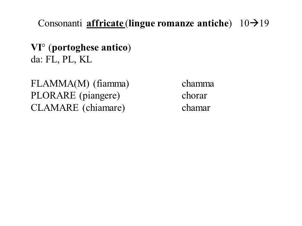 Consonanti affricate (lingue romanze antiche) 10 19 VI° (portoghese antico) da: FL, PL, KL FLAMMA(M) (fiamma)chamma PLORARE (piangere)chorar CLAMARE (chiamare)chamar