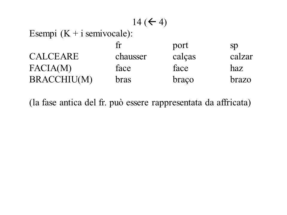 14 ( 4) Esempi (K + i semivocale): frportsp CALCEAREchaussercalçascalzar FACIA(M)facefacehaz BRACCHIU(M)brasbraçobrazo (la fase antica del fr.
