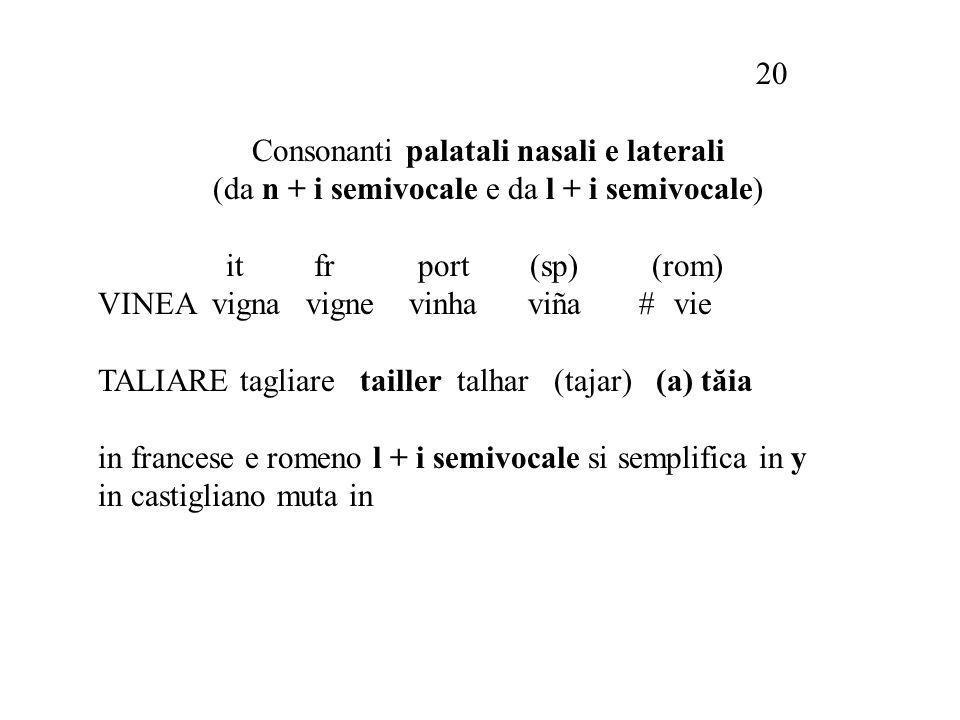 20 Consonanti palatali nasali e laterali (da n + i semivocale e da l + i semivocale) it fr port (sp) (rom) VINEA vigna vigne vinha viña #vie TALIARE tagliare tailler talhar (tajar) (a) tă ia in francese e romeno l + i semivocale si semplifica in y in castigliano muta in