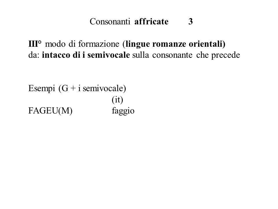 Consonanti affricate 3 III° modo di formazione (lingue romanze orientali) da: intacco di i semivocale sulla consonante che precede Esempi (G + i semivocale) (it) FAGEU(M)faggio