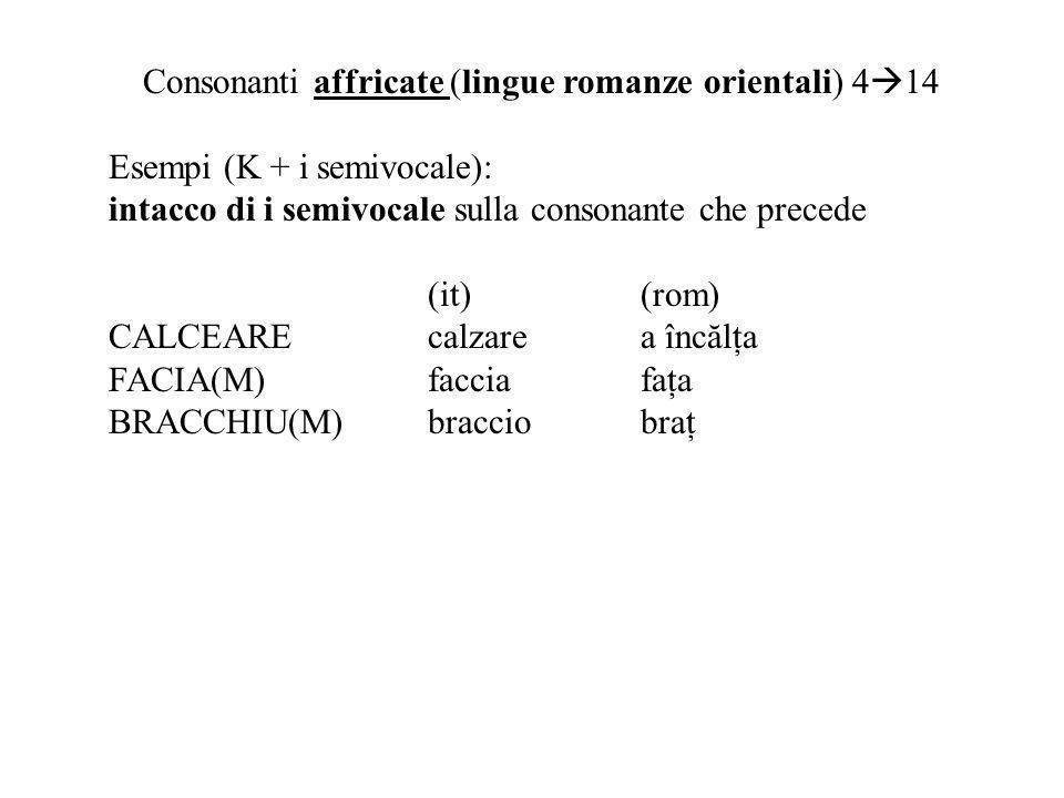 Consonanti affricate (lingue romanze orientali) 4 14 Esempi (K + i semivocale): intacco di i semivocale sulla consonante che precede (it)(rom) CALCEAREcalzare a înc ă l ţ a FACIA(M)facciafaţa BRACCHIU(M)bracciobraţ