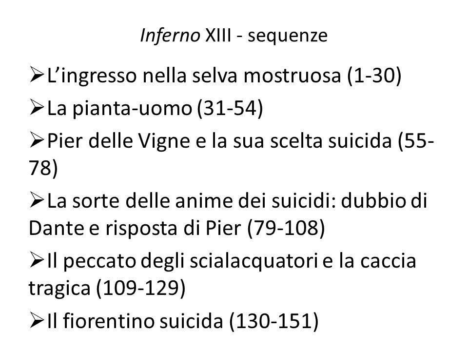 Inferno XIII - sequenze Lingresso nella selva mostruosa (1-30) La pianta-uomo (31-54) Pier delle Vigne e la sua scelta suicida (55- 78) La sorte delle