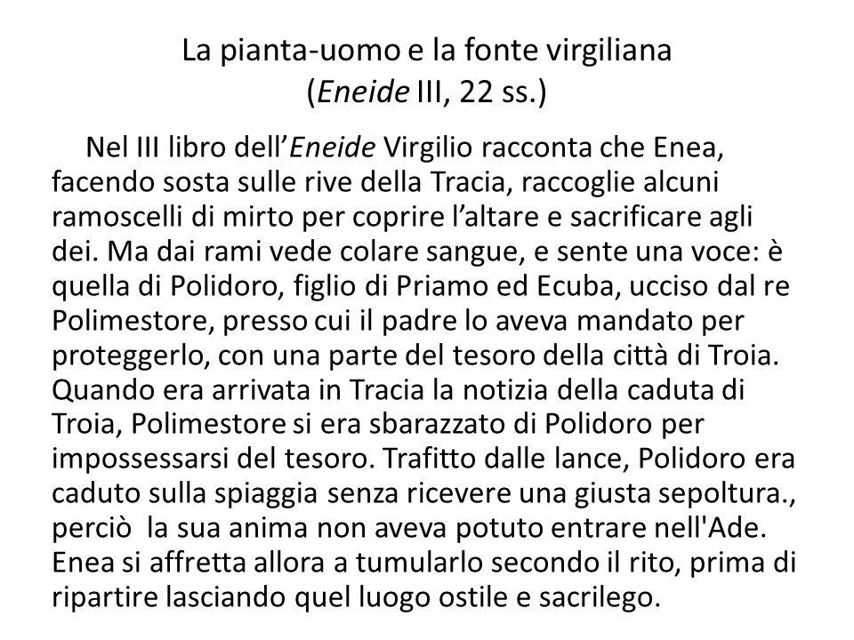 La pianta-uomo e la fonte virgiliana (Eneide III, 22 ss.) Nel III libro dellEneide Virgilio racconta che Enea, facendo sosta sulle rive della Tracia,