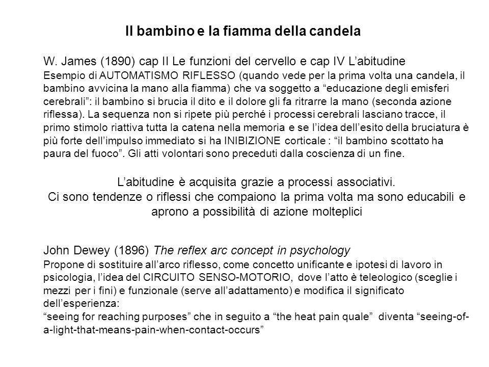 Il bambino e la fiamma della candela W. James (1890) cap II Le funzioni del cervello e cap IV Labitudine Esempio di AUTOMATISMO RIFLESSO (quando vede
