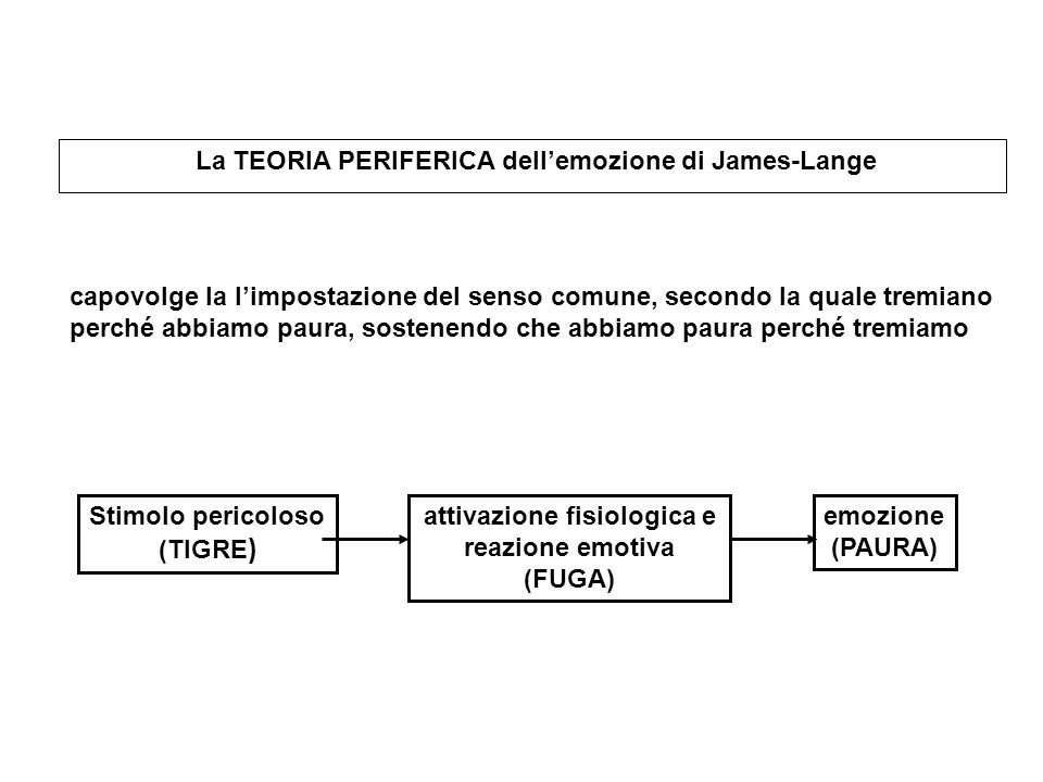 La TEORIA PERIFERICA dellemozione di James-Lange Stimolo pericoloso (TIGRE ) attivazione fisiologica e reazione emotiva (FUGA) emozione (PAURA) capovo