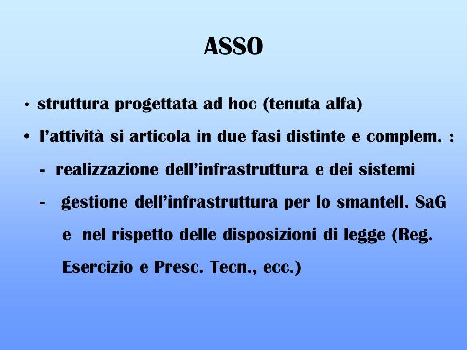 struttura progettata ad hoc (tenuta alfa) lattività si articola in due fasi distinte e complem. : - realizzazione dellinfrastruttura e dei sistemi - g