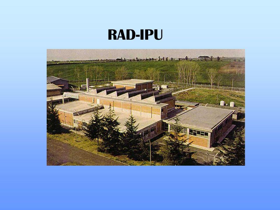 RAD-IPU