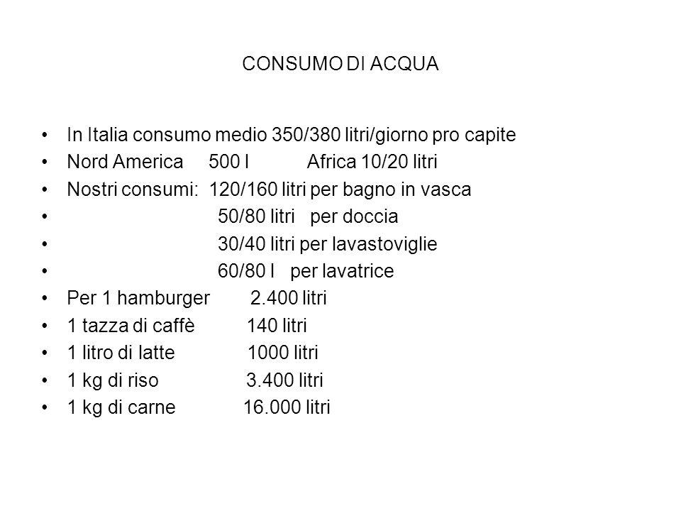 CONSUMO DI ACQUA In Italia consumo medio 350/380 litri/giorno pro capite Nord America 500 l Africa 10/20 litri Nostri consumi: 120/160 litri per bagno in vasca 50/80 litri per doccia 30/40 litri per lavastoviglie 60/80 l per lavatrice Per 1 hamburger 2.400 litri 1 tazza di caffè 140 litri 1 litro di latte 1000 litri 1 kg di riso 3.400 litri 1 kg di carne 16.000 litri