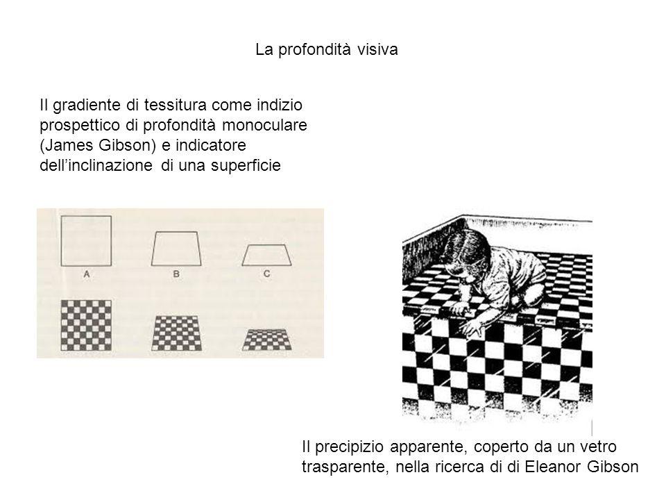 Il gradiente di tessitura come indizio prospettico di profondità monoculare (James Gibson) e indicatore dellinclinazione di una superficie Il precipiz