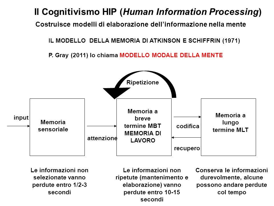 Il Cognitivismo HIP (Human Information Processing) Costruisce modelli di elaborazione dellinformazione nella mente IL MODELLO DELLA MEMORIA DI ATKINSO