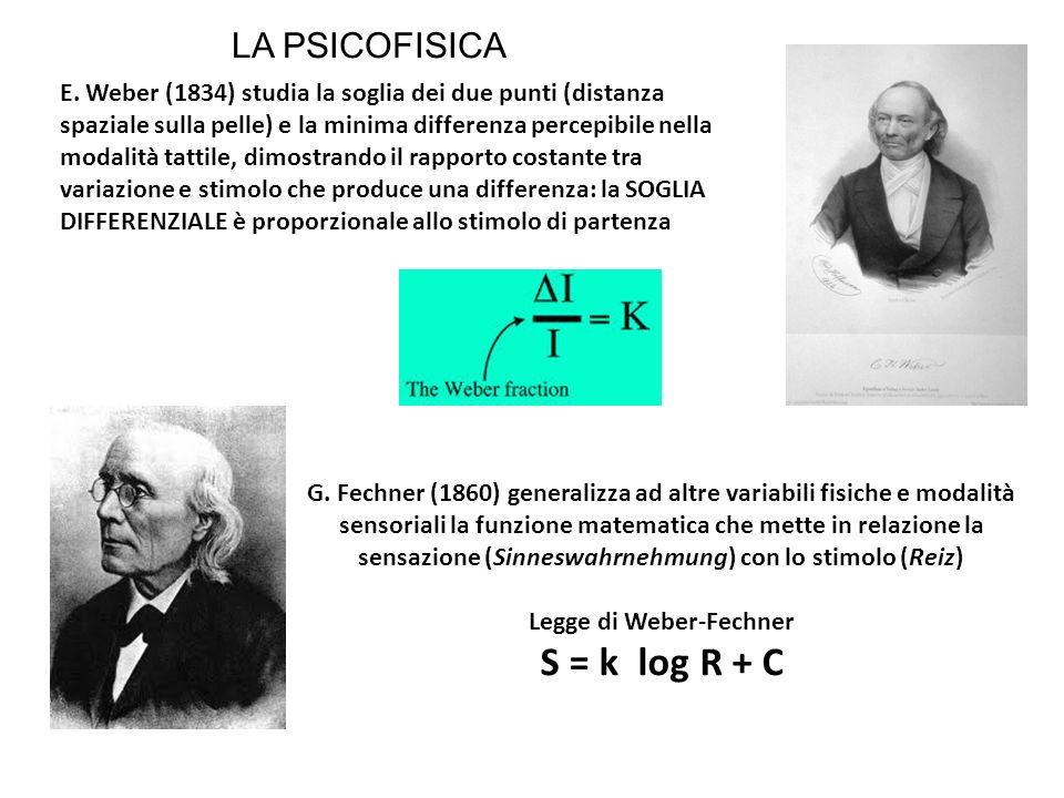 E. Weber (1834) studia la soglia dei due punti (distanza spaziale sulla pelle) e la minima differenza percepibile nella modalità tattile, dimostrando