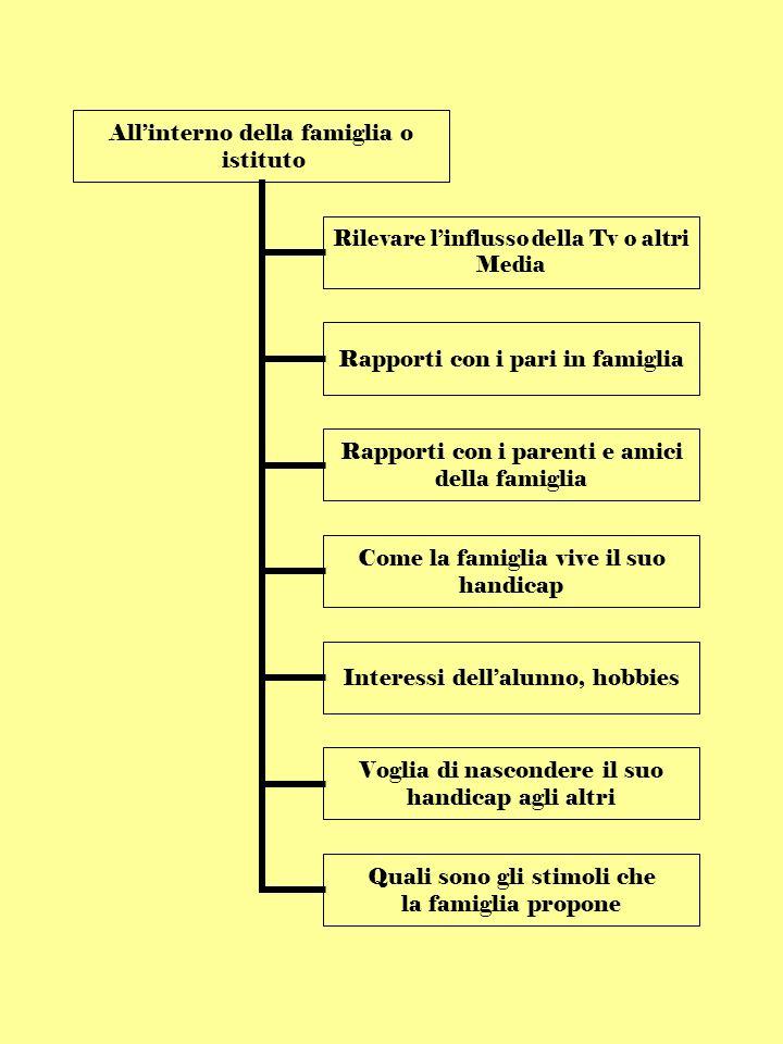 Allinterno della famiglia o istituto Rilevare linflusso della Tv o altri Media Rapporti con i pari in famiglia Rapporti con i parenti e amici della famiglia Come la famiglia vive il suo handicap Interessi dellalunno, hobbies Voglia di nascondere il suo handicap agli altri Quali sono gli stimoli che la famiglia propone