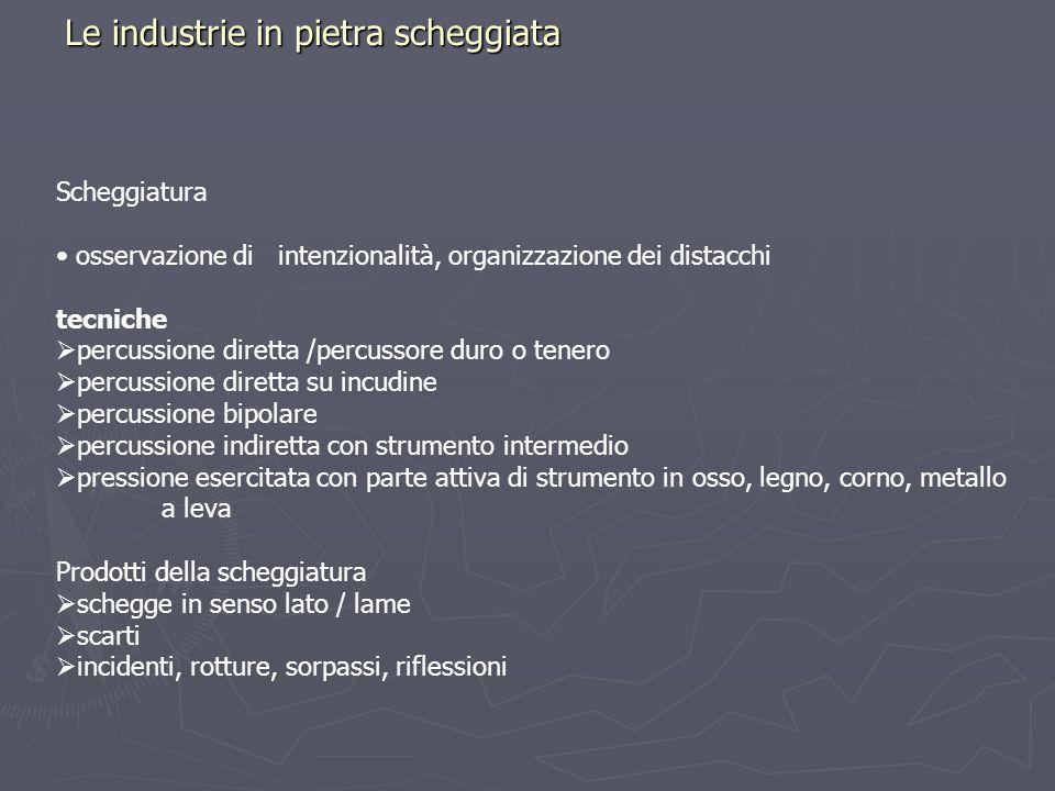Le industrie in pietra scheggiata Scheggiatura osservazione di intenzionalità, organizzazione dei distacchi tecniche percussione diretta /percussore d