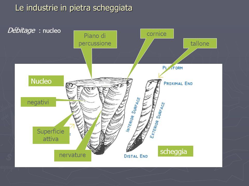 Piano di percussione Le industrie in pietra scheggiata Débitage : nucleo cornice tallone Nucleo scheggia Superficie attiva negativi nervature