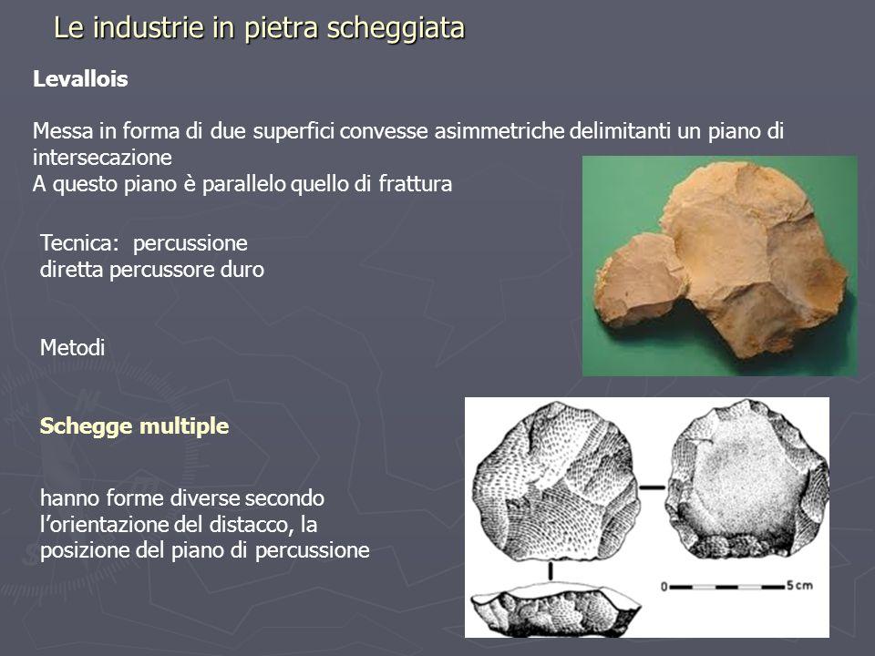Le industrie in pietra scheggiata Levallois Messa in forma di due superfici convesse asimmetriche delimitanti un piano di intersecazione A questo pian