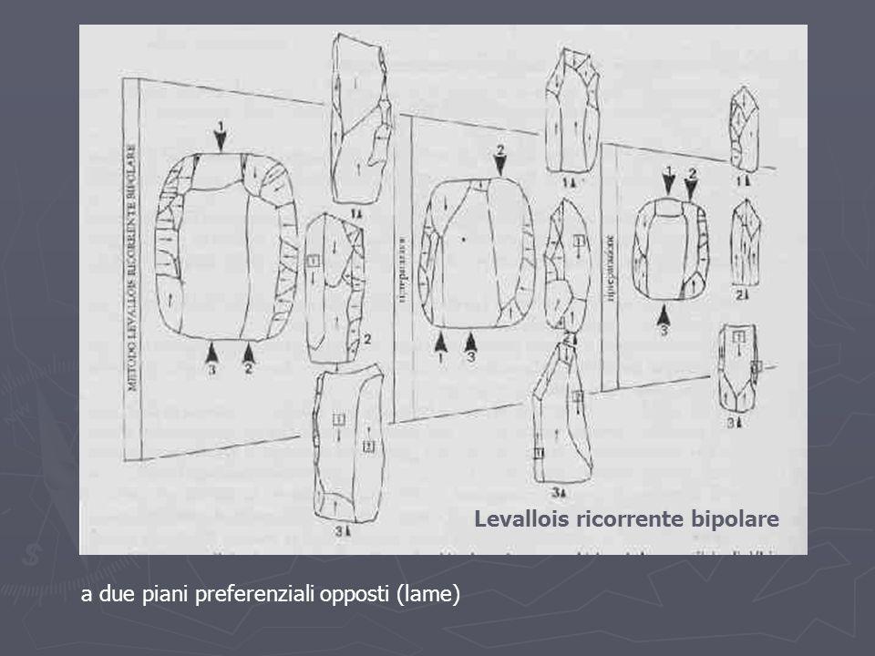 Levallois ricorrente bipolare a due piani preferenziali opposti (lame)