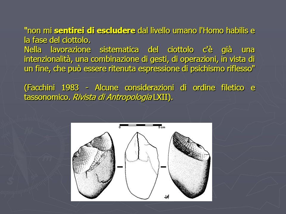 Le industrie in pietra scheggiata Façonnage : per la costruzione di un solo oggetto Bifacciali poliedri preforme Bifacciale: rifinitura con percussore tenero