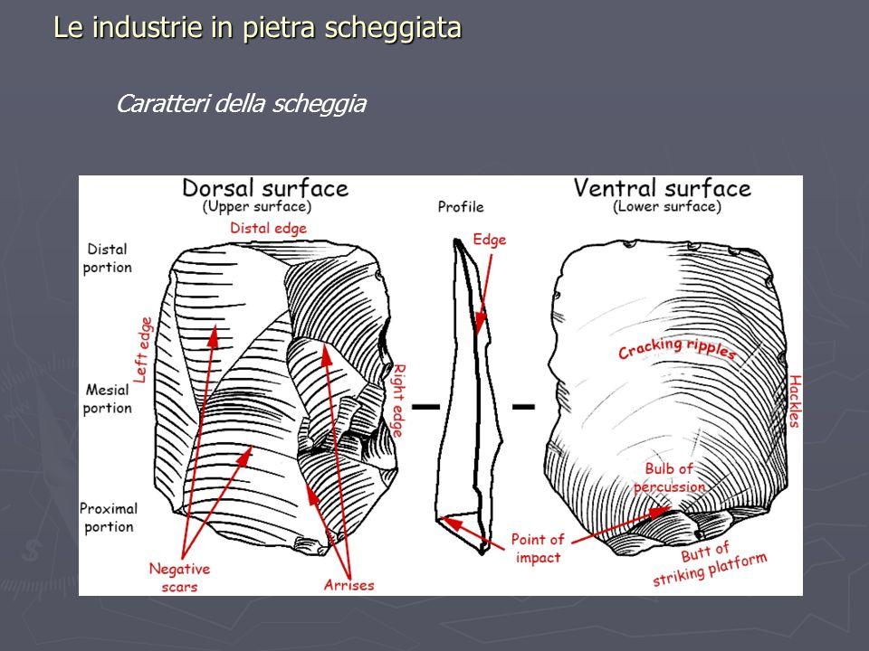 Le industrie in pietra scheggiata Caratteri della scheggia
