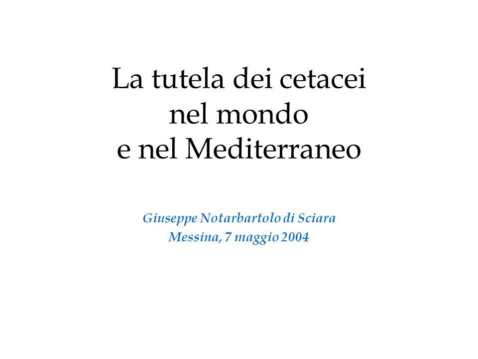 La tutela dei cetacei nel mondo e nel Mediterraneo Giuseppe Notarbartolo di Sciara Messina, 7 maggio 2004