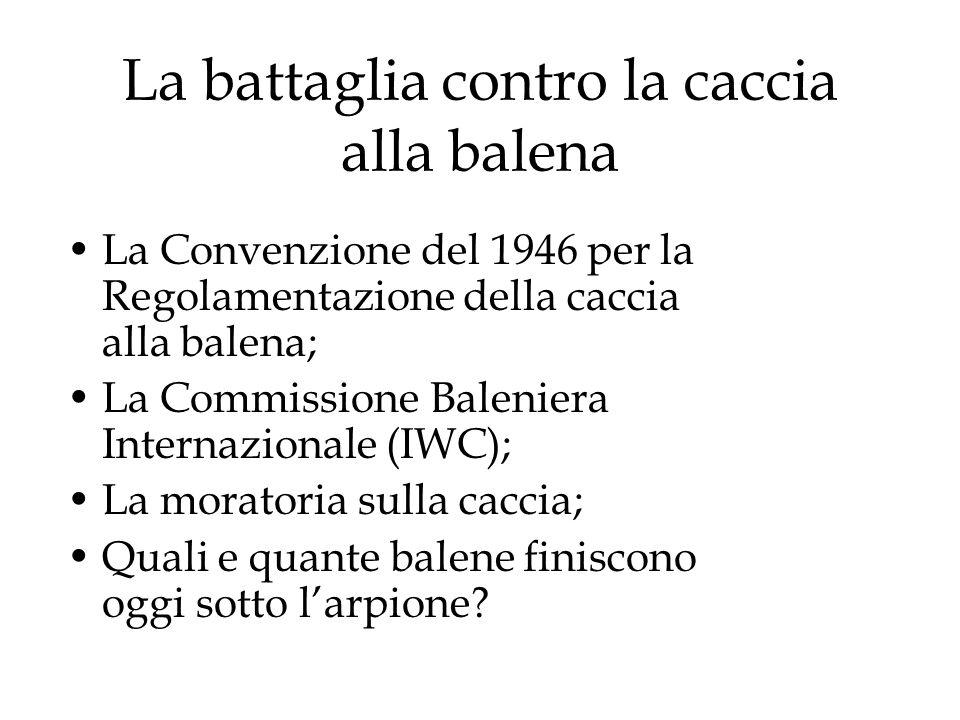 La battaglia contro la caccia alla balena La Convenzione del 1946 per la Regolamentazione della caccia alla balena; La Commissione Baleniera Internazionale (IWC); La moratoria sulla caccia; Quali e quante balene finiscono oggi sotto larpione?