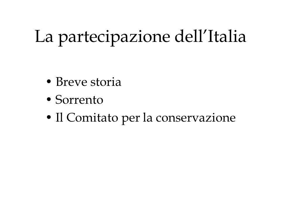 La partecipazione dellItalia Breve storia Sorrento Il Comitato per la conservazione