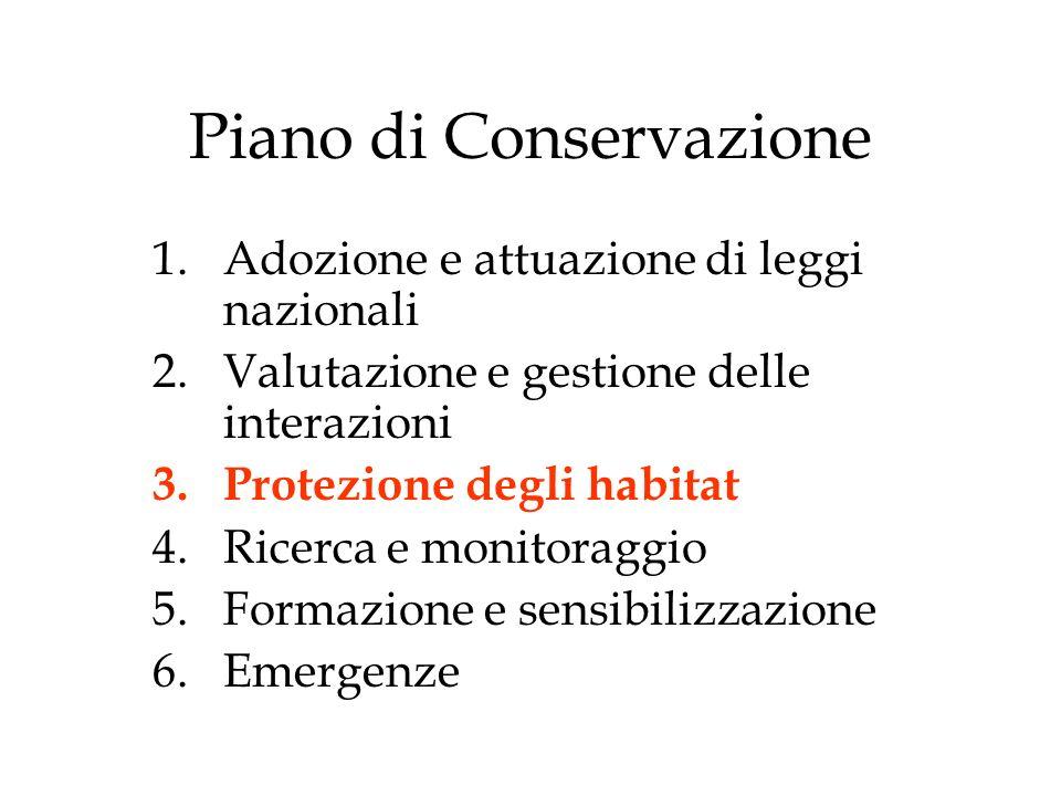 Piano di Conservazione 1.Adozione e attuazione di leggi nazionali 2.Valutazione e gestione delle interazioni 3.Protezione degli habitat 4.Ricerca e monitoraggio 5.Formazione e sensibilizzazione 6.Emergenze