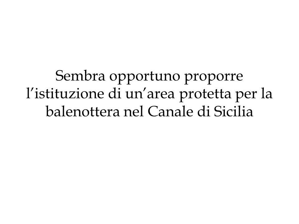 Sembra opportuno proporre listituzione di unarea protetta per la balenottera nel Canale di Sicilia