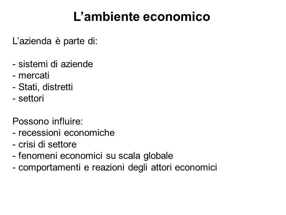 Lazienda è parte di: - sistemi di aziende - mercati - Stati, distretti - settori Possono influire: - recessioni economiche - crisi di settore - fenome