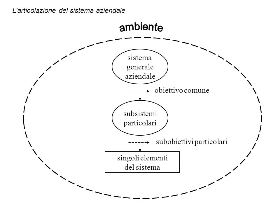 Larticolazione del sistema aziendale sistema generale aziendale subsistemi particolari singoli elementi del sistema obiettivo comune subobiettivi part