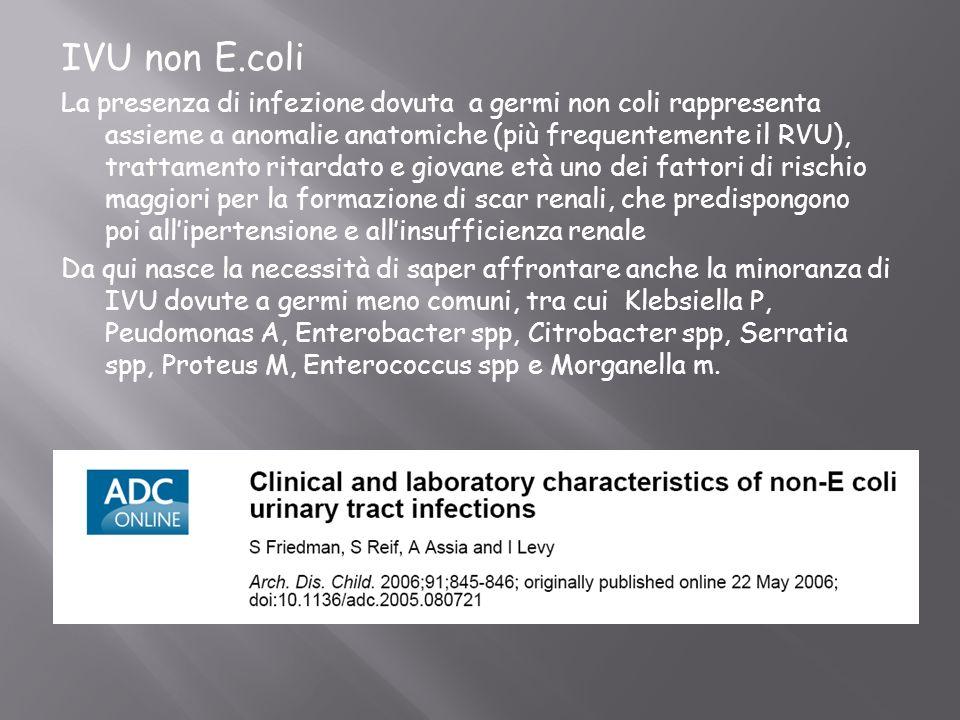 IVU non E.coli La presenza di infezione dovuta a germi non coli rappresenta assieme a anomalie anatomiche (più frequentemente il RVU), trattamento rit